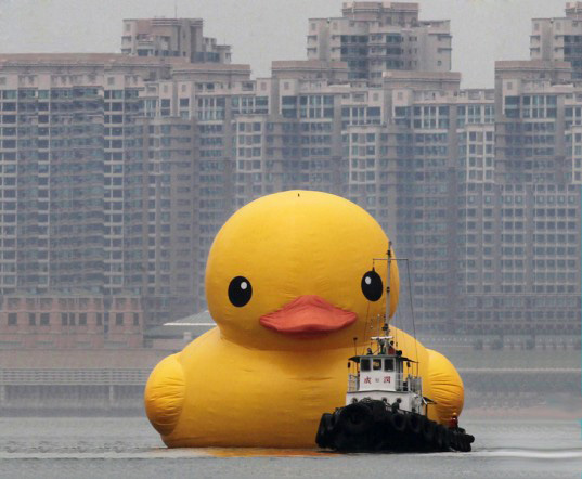 The World's Largest Inflatable Rubber Duck Sails Into Hong Kong