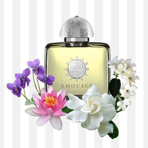 Ciel Woman by Amouage - TOP NOTES: Gardenia, Cyclamen, Violet Leaves. HEART NOTES: Peach, Waterlily, Rose, Jasmine.